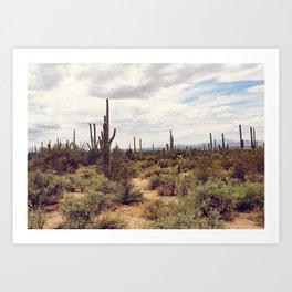 Under Arizona Skies Art Print