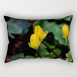 D. o.f. Rectangular Pillow