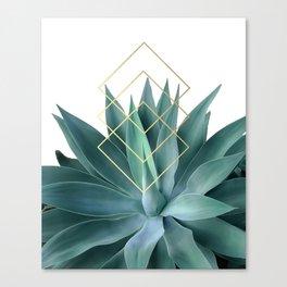 Agave geometrics Canvas Print
