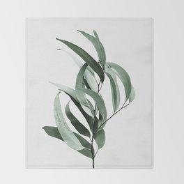 Eucalyptus - Australian gum tree Throw Blanket