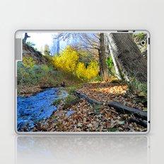 Silver river Laptop & iPad Skin