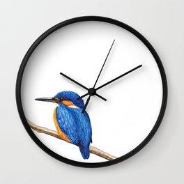 Kingfisher by Lars Furtwaengler | Ink Pen | 2011 Wall Clock