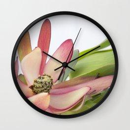 Fynbos Botanical Collection 5 Wall Clock