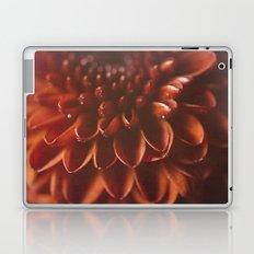 Red Burst Laptop & iPad Skin