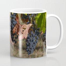 Vineyard Grape Clusters Coffee Mug