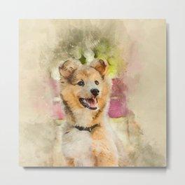 Cute Sheltie Dog #animal #dog #society6 Metal Print