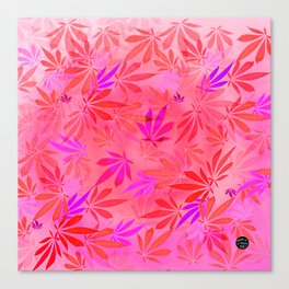 Blush Cannabis Swirl Canvas Print