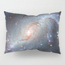 Stellar Nursery NGC 1672. Spiral galaxy in the constellation Dorado Pillow Sham