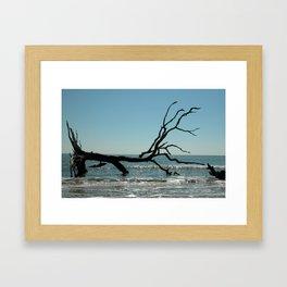 skeletal Framed Art Print