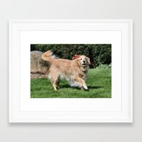 happiness Framed Art Prints featuring Happiness by IowaShots
