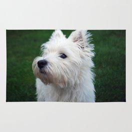 Westie puppy Rug