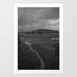 Foottrail, Skidaway Island State Park Art Print