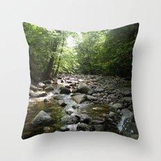 Stream scene Throw Pillow