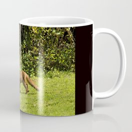Fox on the prowl Coffee Mug