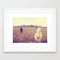 horses Framed Art Prints featuring Horses by Rebecca Mcmillan