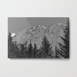 Gwin's Winter Vista - B & W Metal Print