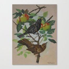 Still Life Pair of Birds Canvas Print