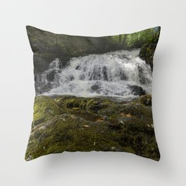 Fairy Falls 2 Throw Pillow