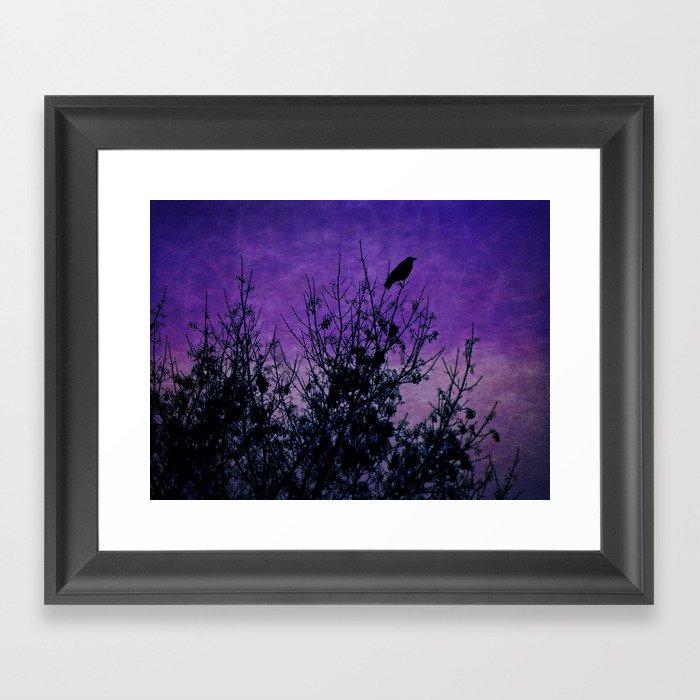 Raven Sentinel Framed Art Print