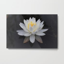 """Peace comes from within. Do not seek it without."" -Buddha Metal Print"