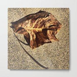 Gold Leaf Metal Print