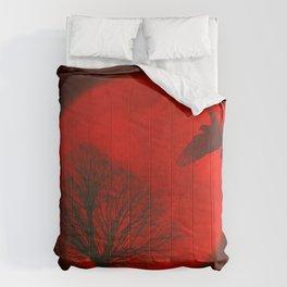 longing Comforters