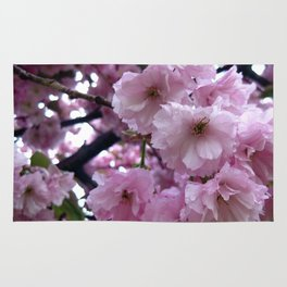 Pink Blossom Rug