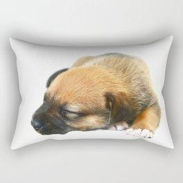 Bailey 1 Rectangular Pillow