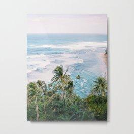 Hawaii Palm view Metal Print