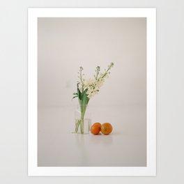 Still Life 001 Art Print