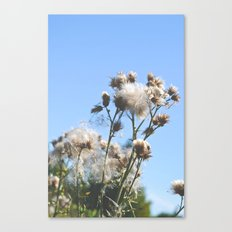 For all I know there's more I don't Canvas Print