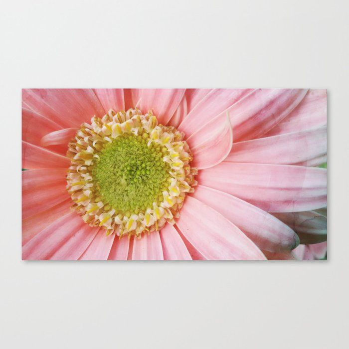 Flower #4 Canvas Print