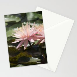 Longwood Gardens - Spring Series 304 Stationery Cards