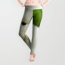 outdoors and relax Leggings