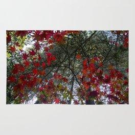 Beautiful Trees / 18 Rug