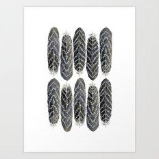 Black Stripe Feathers Art Print
