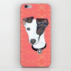 Greyhound Portrait iPhone & iPod Skin