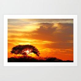 African sunrise Art Print