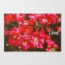 love. Canvas Print