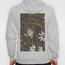 Basking Florals Hoody