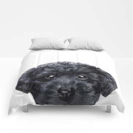 Black toy poodle Dog illustration original painting print Comforters