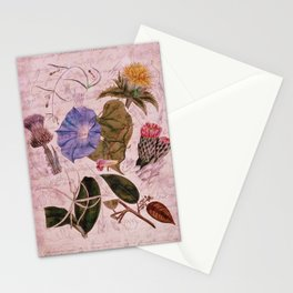 Botanical Study #4, Vintage Botanical Illustration Collage Art Stationery Cards