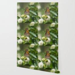 Profile of beautiful orange Gulf Fritillary Butterfly Wallpaper