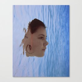 Immersed V Canvas Print