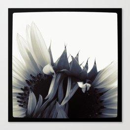 FLOWER 010 Canvas Print