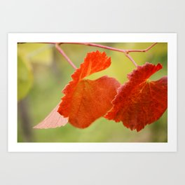 Fall... in love Art Print