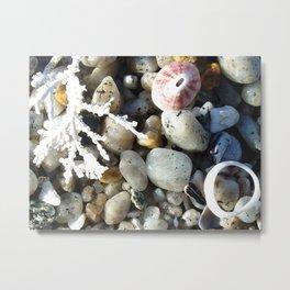 Beachcombing Photograph Metal Print