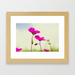 July, July! Framed Art Print