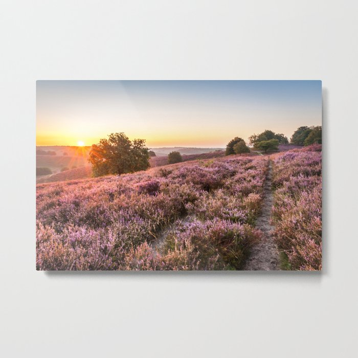Posbank sunrise over the heather Metal Print