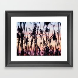 Long Point Sunset Framed Art Print
